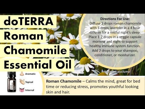 amazing-doterra-roman-chamomile-essential-oil-uses