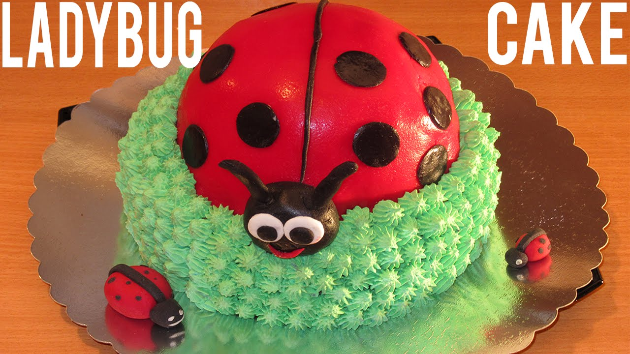 Ladybug Cake How To Decorate A Cake Step By Step Birthday Cake Youtube