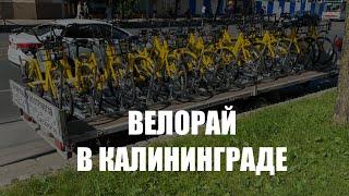 Власти показали пять перспективных велосипедных маршрутов по Калининграду