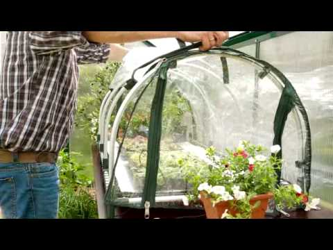 Bio Green Jumbo Propagator - Keen Gardener