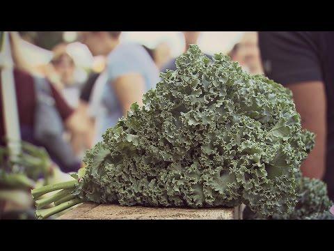 Growing Kale in Iowa   Iowa Ingredient