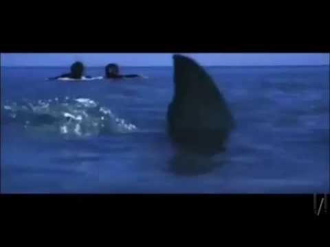 Jaws Reboot Indianapolis Tv Spot