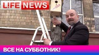 Двойник Ленина готовится к субботнику в прямом эфире LifeNews