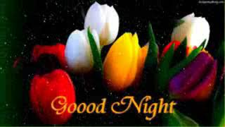 ## Latest Good Night Video For Lovely Sister  Best Wishes   Whatsaap   Video  E cards   E quotes
