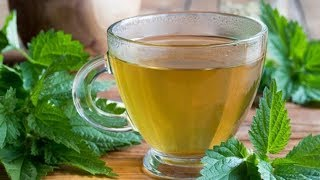 Isırgan otu çayı nasıl yapılır ?
