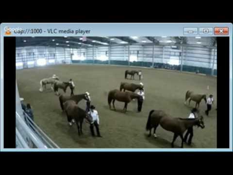 2016 Lancaster County Super Fair - 4-H Western Horse Show