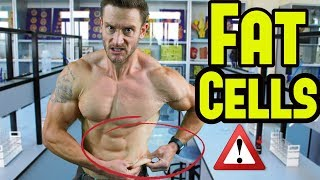 Can You Get Rid of Fat Cells? Weird Science!