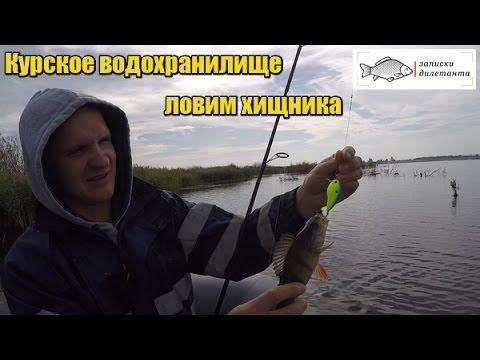рыбалка товары в курске