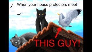 Cats Are NOT The Best House Protectors