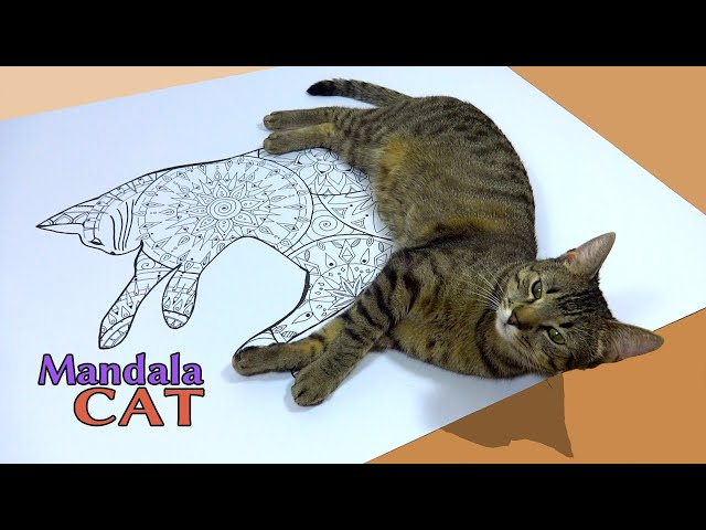 How to make / draw your mandala cat