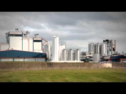 The big cheese of Lichfield - Roadside Stories