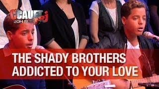 The Shady Brothers - Addicted to Your Love - Live - C