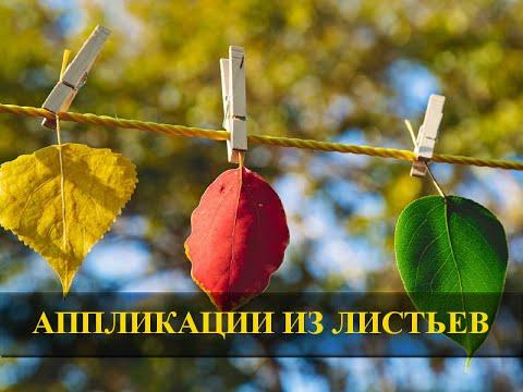 Аппликации из осенних листьев своими руками для детского сада