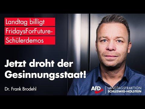 Dr. Frank Brodehl (AfD) entlarvt #FridaysForFuture - Altparteien rasten aus