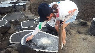 [Bacon's Journey] How to produce the salt we eat: visit salt pan and its traditional way