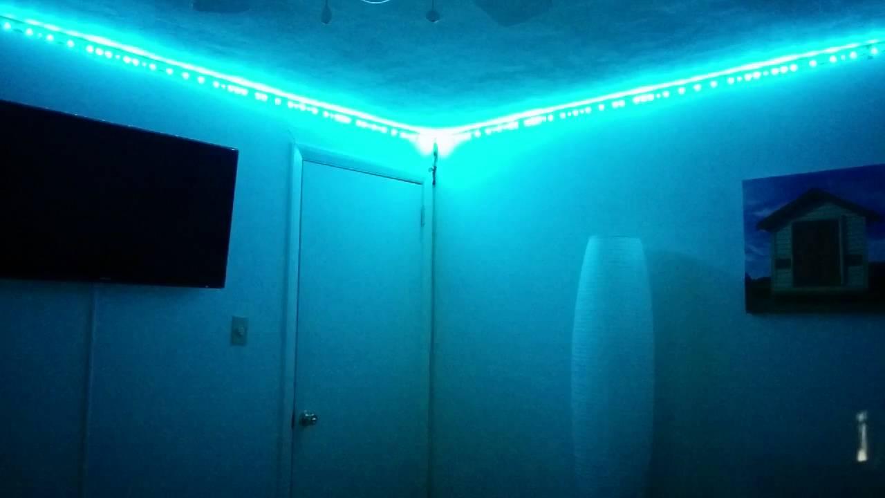 Led Amazon Lights