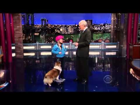 Full Show with Stupid Pet Tricks on David Letterman 15 November, 2013