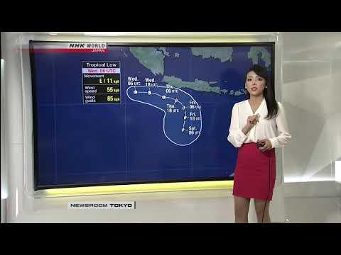 Sayaka Mori NHK World News Room Tokyo November 29th 2017