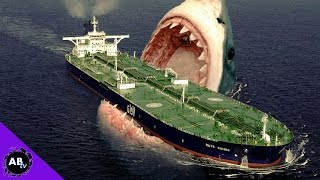 TOP 5 CRAZIEST SHARKS ALIVE!  5 Weird Animal Facts