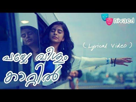 Payye Veeshum Kaattil - Lyrics Video (Aanandam)