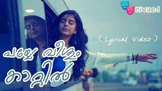 payye veeshum kaattil lyrics video aanandam