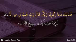Qs 338 Surah 3 Ayat 38 Qs Ali Imran Tafsir Alquran
