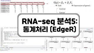 [DEG분석]EdgeR(2)- 대조군vs실험군 통계처리…