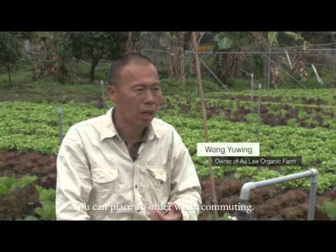 New Trend of Organic Farming in Hong Kong