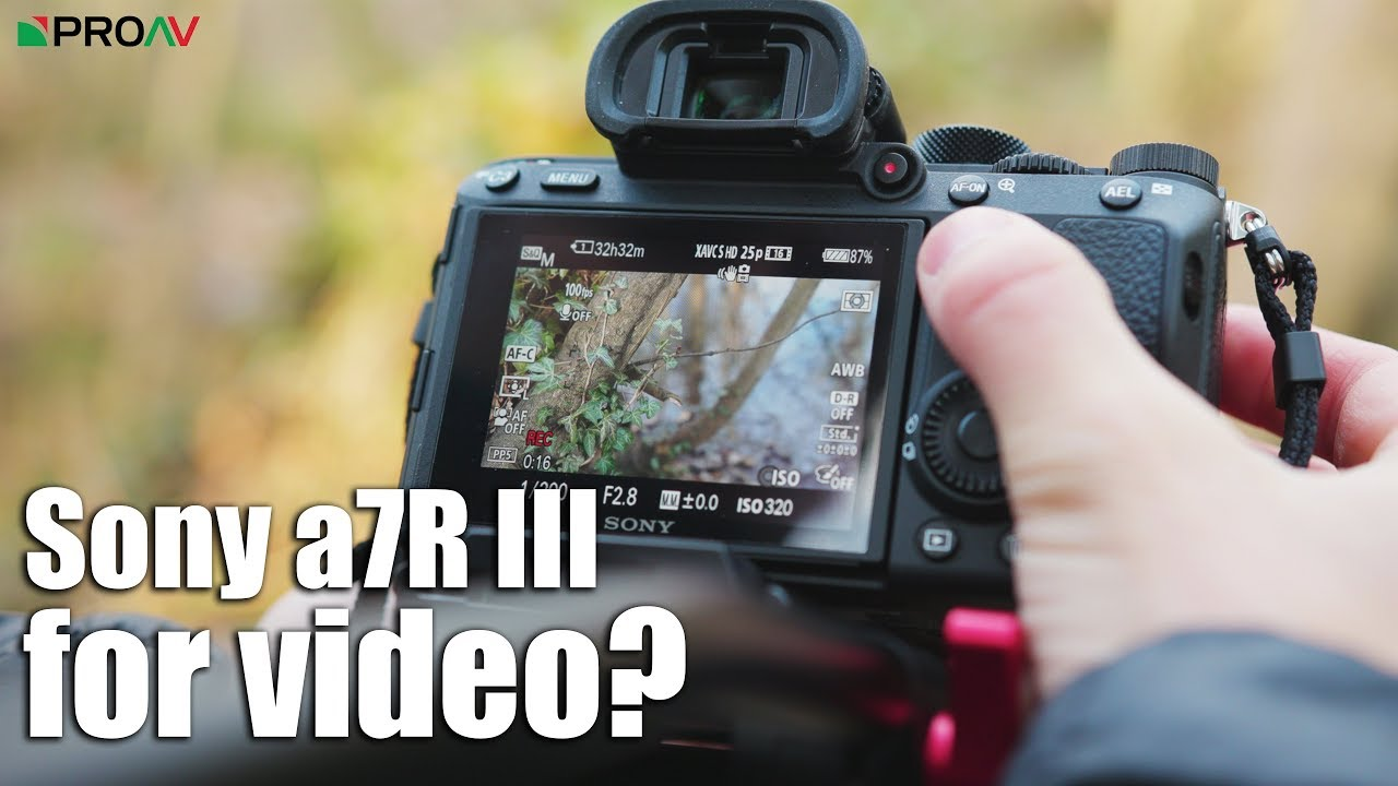 Is the Sony a7rIII worth it for video?