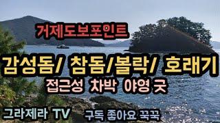 바다낚시 거제도보포인트 10 감성돔/ 참돔/볼락/ 호래…
