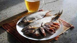 рыбец Вяленый Засолка Рыбы в Жару. Выпуск 303