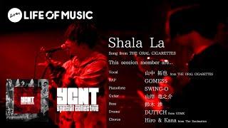 Download Lagu YGNT special collective / Shala La at Billboard Live Yokohama(2020.06.24) mp3