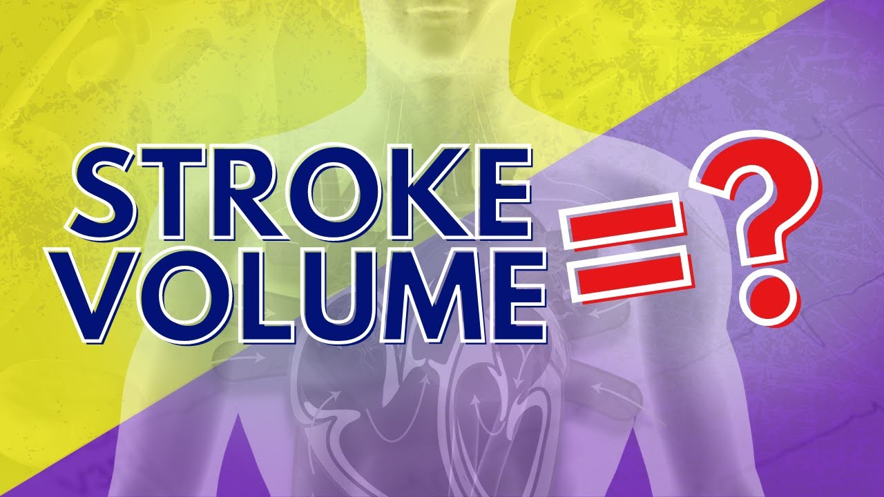 049 What Stroke Volume is and How to Calculate it - YouTube