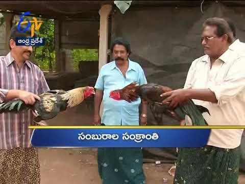 6 AM | Ghantaravam | News Headlines | 13th January 2019 | ETV Andhra Pradesh