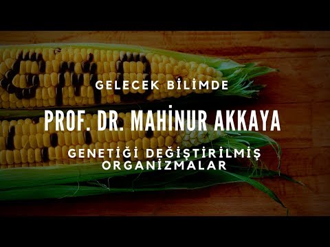 Prof. Dr. Mahinur Akkaya -  Genetiği Değiştirilmiş Organizmalar (GDO)