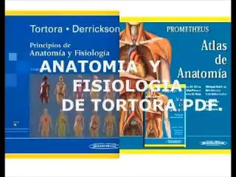 ANATOMIA Y FISIOLOGIA TORTORA -DERRICKSON PDF 13 º EDICIÓN. - YouTube