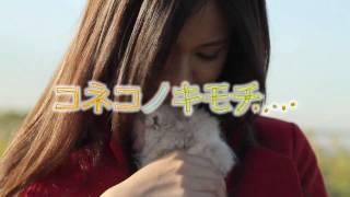 2011年5月14日(土)よりシネマート六本木ほか全国順次公開 ミュージッ...