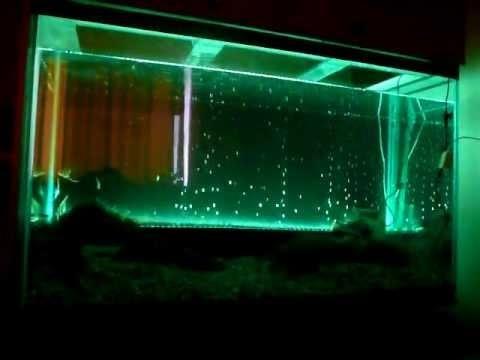Как сделать светодиодную подсветку на аквариум