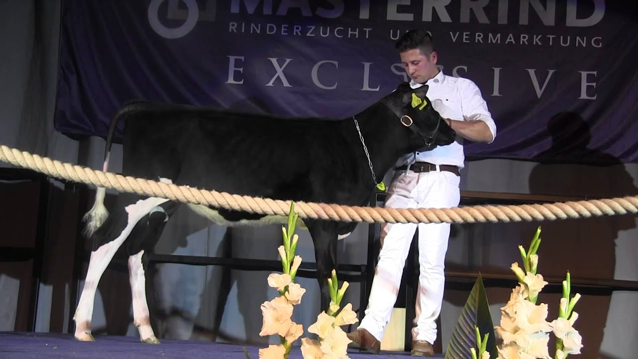 Konvent 2015 - Auktion 09