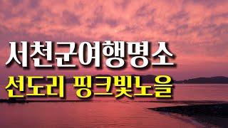 서천군 여행 명소 선도리갯벌체험장 서해 바다의 핑크빛 …