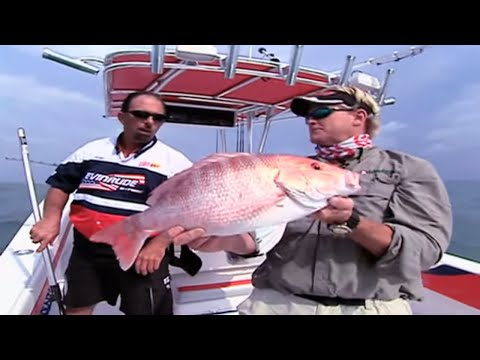 Red Snapper Fishing off the Coast of Port Aransas Texas
