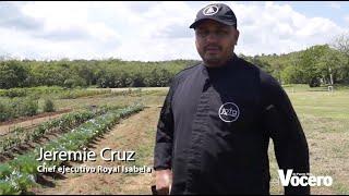 Abriendo surcos con nuestro Chef Jeremie Cruz