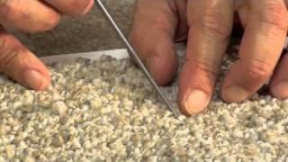 TCS - How to Repair Pulled Tufts in Berber Carpet