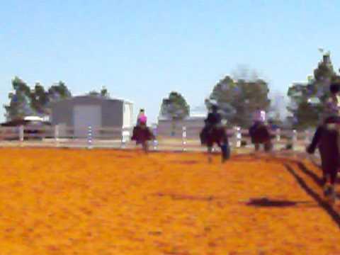 Chips Cruizin Legend (Mia) First Horse Show