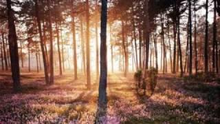 Beyond Twilight - Crying By Jorn Lande