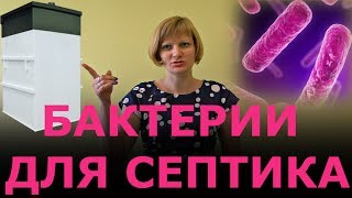 Бактерии для септика. Аэробные и анаэробные бакте...