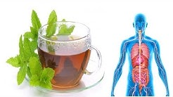 See What Happen To Your Body When You Drink Peppermint Tea Every Day