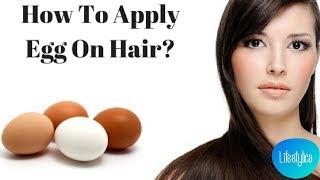 How to apply EGG on hair - Easiest hair pack recipe for dry damaged hair | Hair packs for dry hair