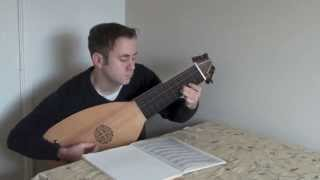 Baroque lute to buy