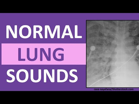 hqdefault a guide to auscultating lung sounds emt training base